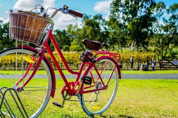 Bonus bici al via. Click Day il 3 novembre