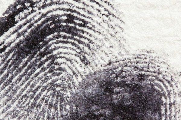 SPID, quante identità digitali posso avere?